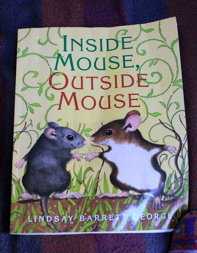 It starts with two little mice, one inside the house and one outside the  house.